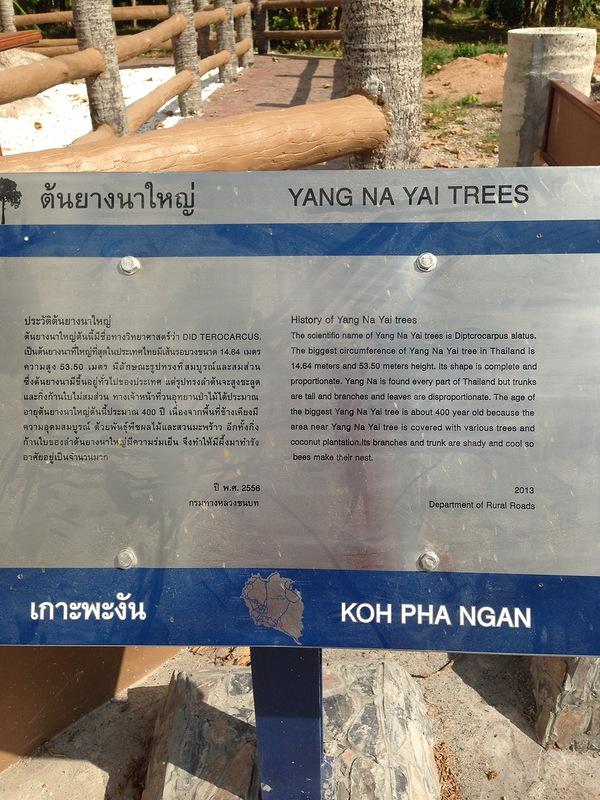 tree-info