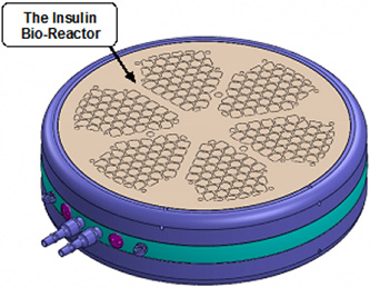 insulin-bio-reactor